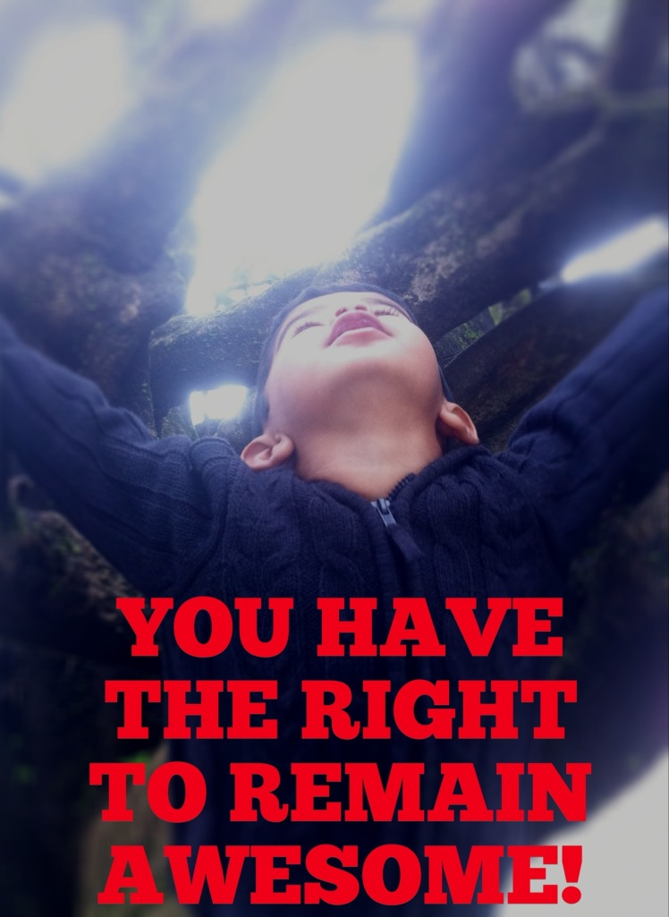 You have the right to remain awesome
