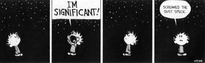 Calvin & Hobbes Dust Speck