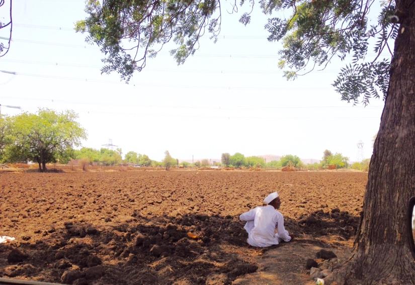 Drought Farmer